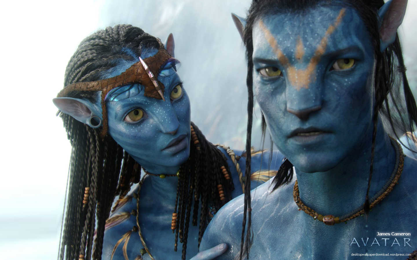 James cameron avatar movie wallpaper 1440