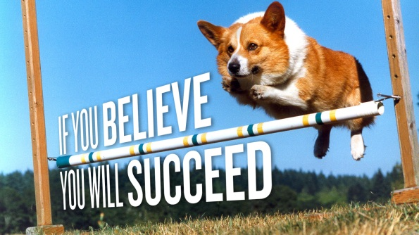 awesome-full-hd-dog-wallpaper-belive